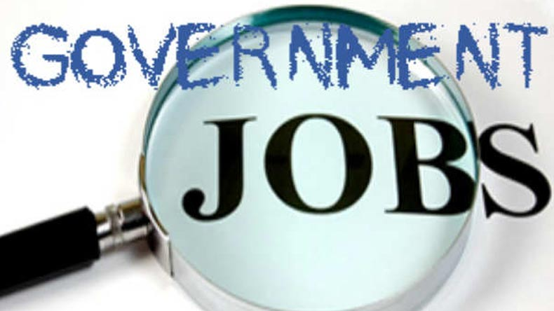 Govt Jobs to Boost